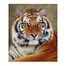 Tiger  5D Diamond Painting DIY Cross Stitch Kit Home Art Decor Craft 30 X 40cm