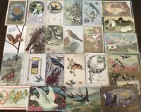Nice ~Lot of 30 Antique Greetings Postcards with *BIRDS~Bird-in sleeves--s772