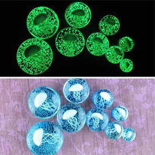 Pair Glow in The Dark Jellyfish Ear Glass Flesh Plugs Earring Tunnel Expander