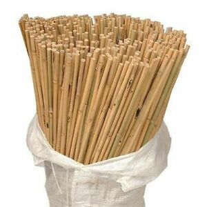 Bamboo Canes Thick Stake Garden Plant Flower Support Profesional Stick Cane Pole