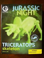 DINOSAUR SKELETON TRICERATOPS JURASSIC NIGHT GLOW in the DARK GEOWORLD KIT