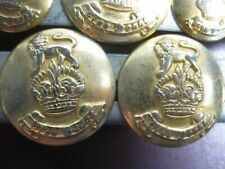 Set of 9 Buttons with Lion and Crown Gina Donna Gold Metal
