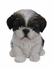 Vivid Arts-Pet Pals Cucciolo & Kennel BOX-Black & White Shih Tzu