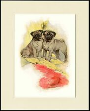 PUG TWO LITTLE DOGS LOVELY DOG PRINT MOUNTED READY TO FRAME