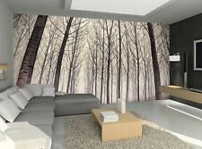 Forest, Fog Wall Mural Photo Wallpaper GIANT WALL DECOR Paper Poster Free Paste