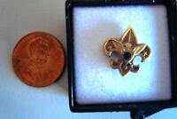 OLD BOY SCOUTS OF AMERICA BSA SCOUT EXECUTIVE AWARD PIN  w/ STONE & DISPLAY CASE