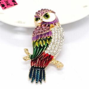 Betsey Johnson Multicolor Enamel Rhinestone Cute Owl Charm Brooch Pin Gift
