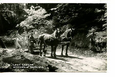 Horse Drawn Cart-Dells Tourists-Wisconsin-RPPC-Vintage Real Photo Postcard