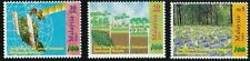 100th Anniversary of Forestry Tree Plant Map Satellite Malaysia 2001 (stamp) MNH
