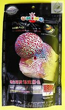 100 g. Best Okiko Platinum Flowerhorn Cichlid Fish Head Huncher Color Faster