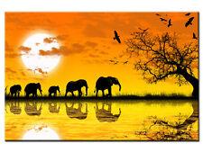 Tableau moderne décoration murale toile déco africain BP13004 80x50 cm