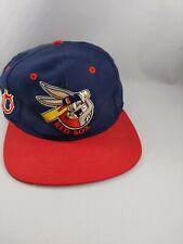 Vtg 1993 Boston Red Sox Looney Tunes Bugs Bunny Baseball Cap Hat Snapback