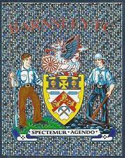 PANINI CHAMPIONSHIP 2009- #003-BARNSLEY TEAM BADGE-SILVER FOIL