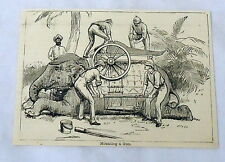 1885 magazine engraving ~ MOUNTING A GUN men + elephant, INDIA