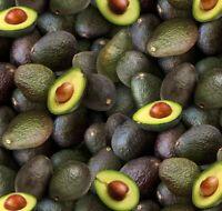 Food Festival Fabric - 603 Green Packed Avocado  - Elizabeth's Studio YARD