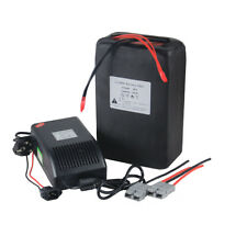48V 20Ah Polymer Rechargeable Lithium Battery 1000W Electrice Bike + PCB 50A BMS