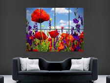 Mohnblumen Feld Blumen Sonne GIANT WALL POSTER ART PICTURE PRINT groß riesig