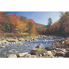 AUTUMN BROOK - SCENIC POSTER 24x36 - NATURE LANDSCAPE 3764