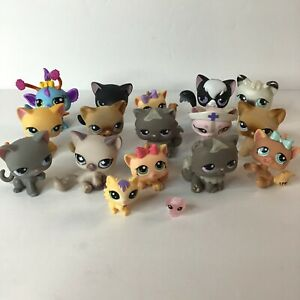 Hasbro Lot of 17 Official Littlest Pet Shop LPS Cats Kittens