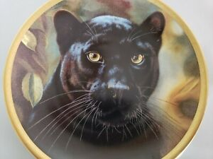 """Cat Kitty Lenox Collector Plate """"Black Panther"""" Artist Qua Big Cats Of World"""