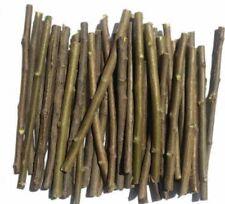 5 Organic Neem Chew Sticks for Healthy Teeth and Gums