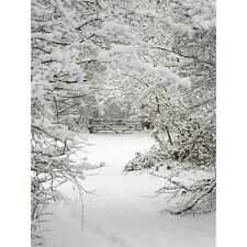 3X5FT Vinyl Winter Ice Snow Tree Photography Backdrop Background Studio Props US