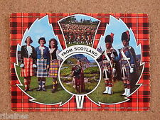 R&L Postcard: From Scotland, Bag-pipes, Kilts, Thistle, Continental Size