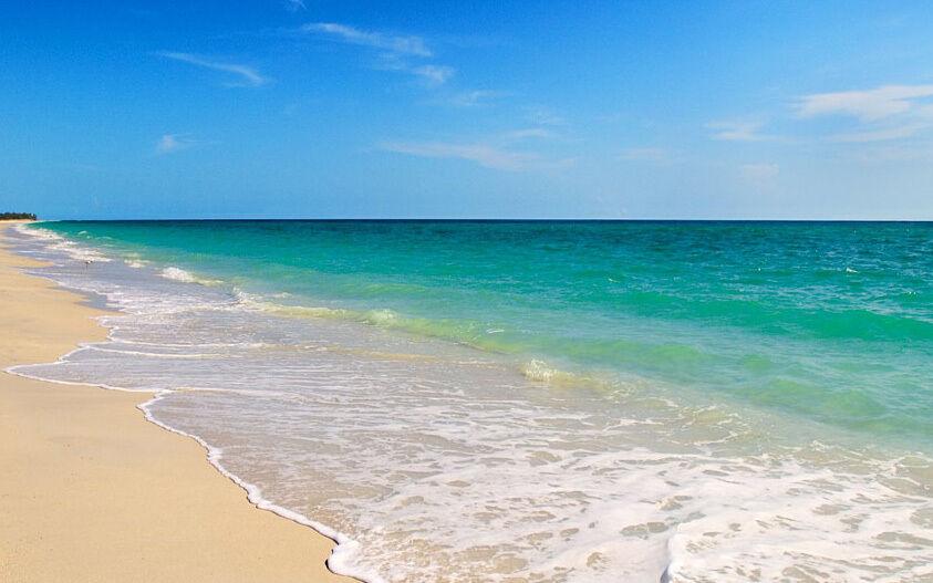 Florida Sea Treasures