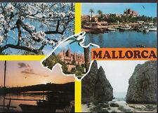 Spain Postcard - Views of Mallorca   LC4537