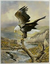 American Bald Eagle Ted Blaylock Art Metal Sign Signed At Rest on River Bird New