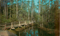 Postcard Okefenokee Swamp Park, Waycross, GA