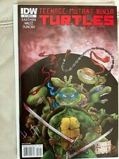 IDW Teenage Mutant Ninja Turtles 1 Sam Keith cover RI C NM/M!! first print