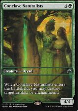 Magic: the Gathering MTG CONCLAVE NATURALISTS FULL ART GAME DAY PROMO