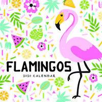 2020 Flamingos Square Wall Calendar by Paper Pocket 30 x 30cm 81318
