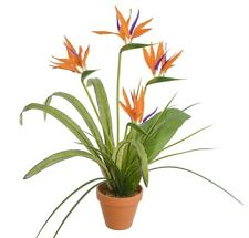 "Potted Strelitzia (Bird Of Paradise) Bush Artificial Flowers / Plant 22"" Tall"