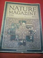 VINTAGE  NATURE MAGAZINE ILLUSTRATED POPULAR ARTICLES ABOUT NATURE  APRIL 1923