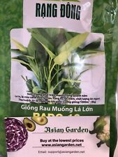 Hat Giong Rau Muống Trắng Ong Choy/ Water Spinach (2500 Seed )
