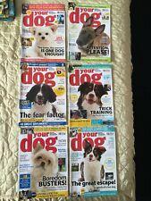 Your Dog Magazines x 6