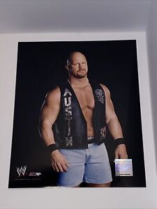 WWE Steve Austin Photo File 2003 Official WWE Licensed Product 8x10 Picture
