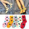 Cute Soft Women Socks Cute Cartoon Hedgehog Cotton Warm Socks Girls Xmas Gift