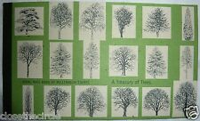 GB Prestige Stamp Booklet DX26 Treasury of Trees Royal Mail Mint MNH