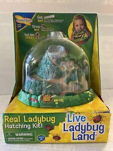 NEW Insect Lore Kit - LadyBug Land Live Ladybug Hatching Kit