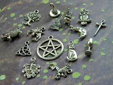 15 WICCAN Charms Mixed Sampler RAVEN Cat Besom MOON Pentacle Cauldron PAGAN