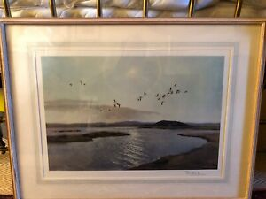 """SIR PETER SCOTT- SIGNED LTD EDITION PRINT-""""SUMMERTIME IN THE CANADIAN ARCTIC"""" ."""