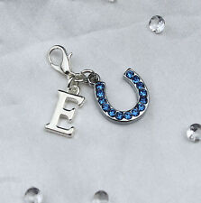 Something Blue Crystal Horse Shoe & Letter Bride Gift Garter Charm with Box