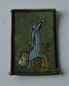 British Army Defence Exposive Ordnance Munitions Search Training DEMS Unit Badge