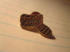 DAVY CROCKETT Coonskin Hat Murfreesboro Tennessee Goldtone Jaycees Pewter Pin