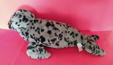 Large Spotted Seal Pup