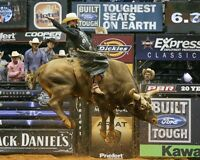 J. B. Mauney / Bull Rider 8 x 10 / 8x10 GLOSSY Photo Picture IMAGE #2