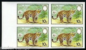 BELIZE 10c WORLD WILDLIFE FUND IMPERFORATED BLOCK OF FOUR MINT NH